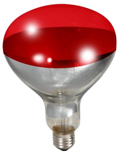 Little Giant 250 Watt Red Bulb For Brooder Lamp Animals Pet Supplies Pet Supplies Reptile