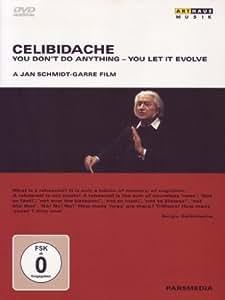Celibidache  You Dont Do Anyth