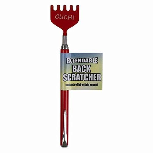 Telescopic Extendable Back Scratcher - Metal Clip Novelty Pen - Black by ITP Imports