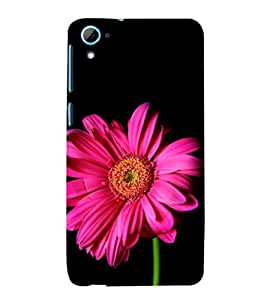 ifasho Designer Phone Back Case Cover HTC Desire 826 :: HTC Desire 826 Dual Sim ( Number 12 Twelve )