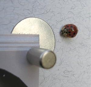 mini magnet pinnwand die kleinste st rkste der welt best preis mini k chen. Black Bedroom Furniture Sets. Home Design Ideas