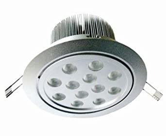 Ch Elite Recessed Ceiling Light L029a At 27w 110 120v Outside Driver 25 4