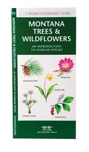 Montana Trees & Wildflowers: An Introduction to Familiar Species (State Nature Guides)