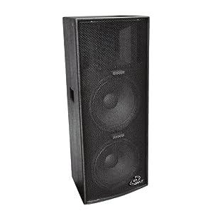 PylePro PPAD122 Dual 12-Inch Heavy Duty 3-Way Speaker Cabinet