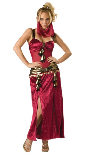 Sexy Desert Harem Belly Dancer Costume
