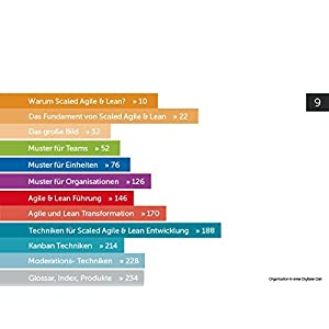 Organisation in einer Digitalen Zeit: Ein Buch für die Gestaltung von reaktionsfähigen und schlank