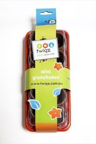 Twigz Mini Greenhouse for Kids Gardening