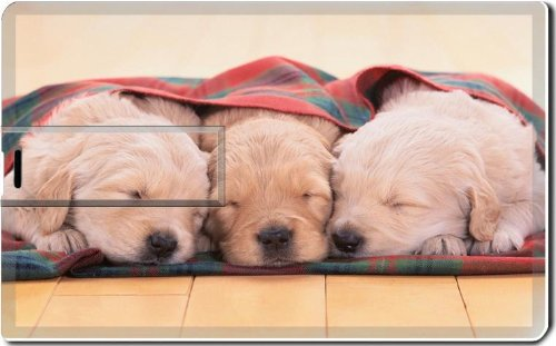 Photo Blanket Reviews front-312330