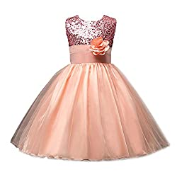 Rosennie 2016 Kids Girls Pageant Wedding Birthday Party Bridesmaid Dress