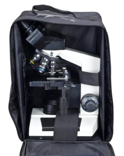 Blank Microscope Slides