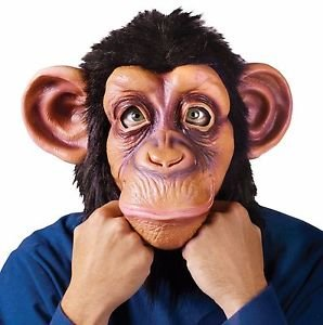 [FULL Chimp Mask Monkey Chimpanzee Animal Fur Mens Funny Halloween Face Furry NEW] (Chimp Hands Costume)