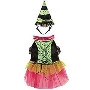 Zack & Zoey Witchy Business Costume for Dogs, Large, Green