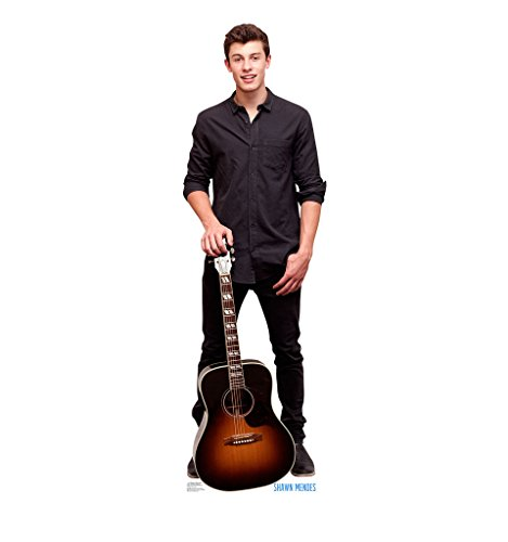 Shawn Mendes - Advanced Graphics Life Size Cardboard Standup (Life Size Cardboard Stand Up compare prices)