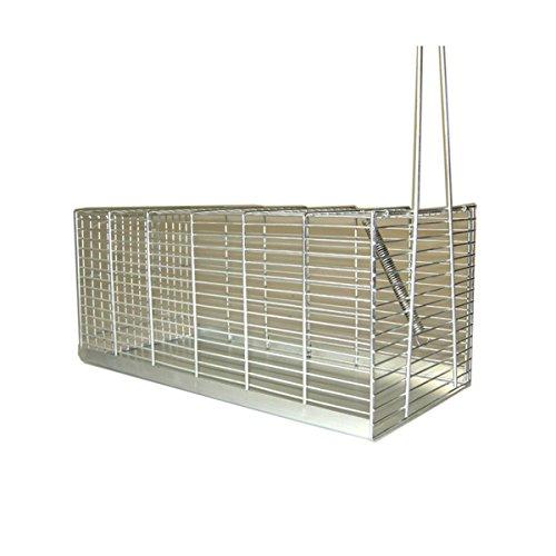trappola-a-galleria-per-topi-310-mm-media-gabbia-cattura-ratti-con-molla