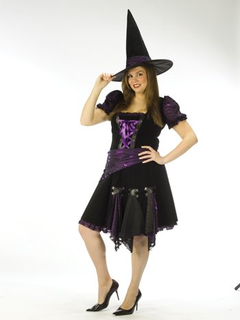 Purple Punk Witch Adult Plus Costume