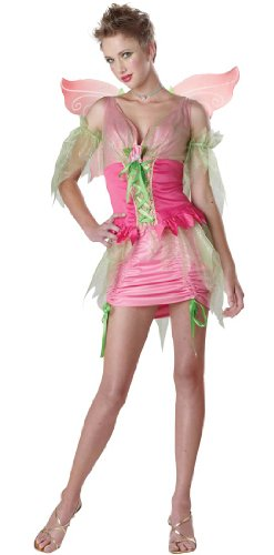 Pixie Fairy Teen Costume