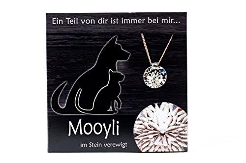 mooyli-tiere-befullen-sie-einen-kristall-als-besondere-erinnerung-ob-babys-erste-locke-geburt-taufe-