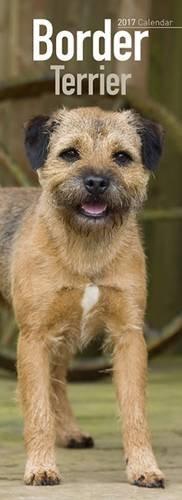 border-terrier-slim-calendar-2017-slim-standard