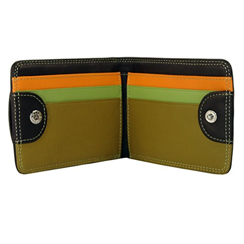 belarno-bifold-multi-color-wallet-in-black-rainbow-combination-brown