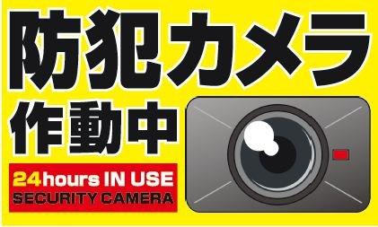 【防犯カメラ】屋外防水型監視カメラ 赤外線付き 画角65度 通常画質