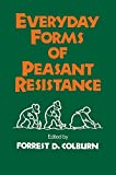 img - for Everyday Forms of Peasant Resistance book / textbook / text book