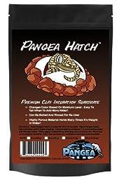 Pangea Hatch Premium Reptile Egg Incubation Substrate (8 lb)