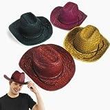 Fun Express Adult Assorted Straw Cowboy Hat (1 Dozen)