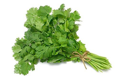 香草 香菜 パクチー シャンツァイ コリアンダー Coriander 種子 1g 約100粒程度