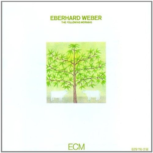 Following Morning by Eberhard Weber