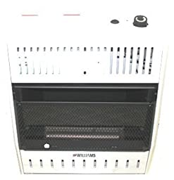 Williams - 2096513.9 - Portable Gas Heater, LP/NG, 20000BtuH, 8inL