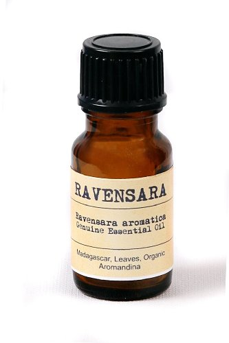 Ravensara Essential Oil - Ravensara aromatica 0.35 fl oz - 10 mL