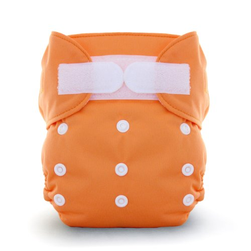 Thirsties Duo All In One Cloth Diaper, Mango, Size Two (18-40 Lbs)