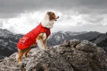 Hurtta Winter Dog Jacket 14in Blue