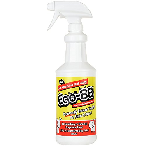 eco-88-pet-stain-and-odor-remover