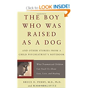 The Boy Who Was Raised as a Dog: And Other Stories from a Child Psychiatrist's Notebook--What Traumatized Children Can Teach Us About Loss, Love, and Healing