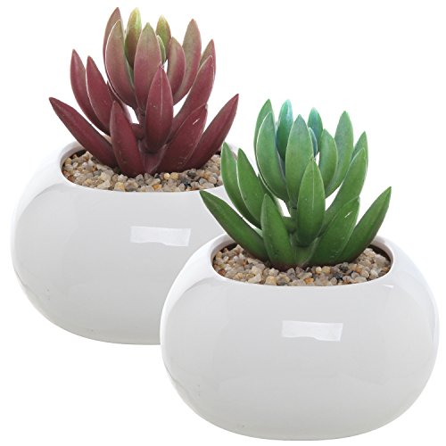 Set of 2 Small Round White Ceramic Modern Succulent Planter Pots - 3.5 Inch MyGift Home Decor