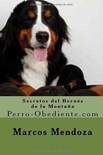 Secretos del Bernes de la Montaña: Perro-Obediente.com