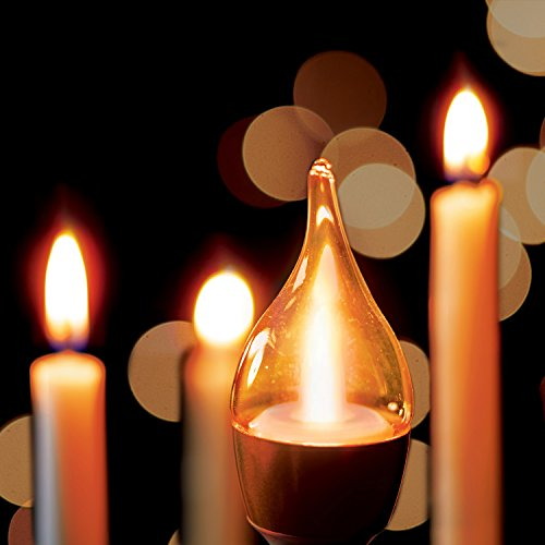 Verbatim True Candle Candlelight 1900K LED Bulb 98423 ...