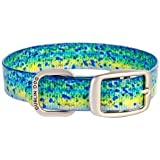 Dublin Dog Waterproof Collar, Large, Mahi-Mahi