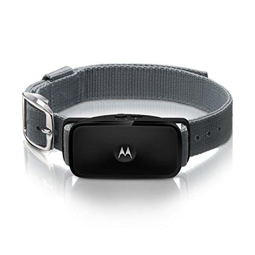 Motorola BARK200U Collare Anti Abbaio per Cani a Ultrasuoni, Nero
