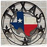 LL Home Metal Texas Map Circle