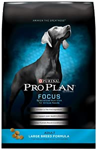 Purina Pro Plan Focus Adult Large Breed Formula Dog Food