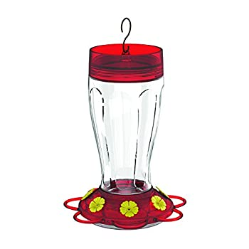 More Birds Hummingbird Feeder, Big Gulp Glass Hummingbird Feeder, 40-Ounce Hummingbird Nectar Capacity