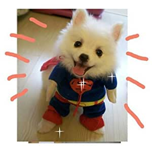 Sanlise New Pet Cat Dog Puppy Cotton Clothes Costumes Superman Suit size XS/S/M/L/XL (M)