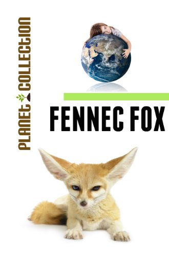 Fennec Fox: Picture Book (Educational Children's Books Collection) - Level 2 (Planet Collection)