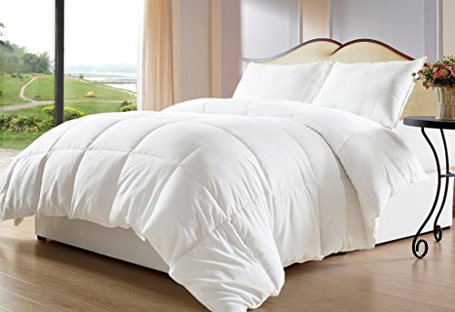 Bed-in-a-Bag White Down Alternative Comforter/Duvet Cover Insert, Twin, White (Eiderdown Quilt compare prices)