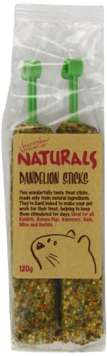Rosewood-Pet-Dandelion-Sticks-Healthy-treat-for-Small-Animals-1-Pack-120g