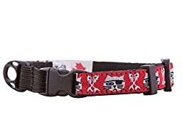 RC Pet Products 1/2-Inch Kitty Clip Cat Collar, 8 by 10-Inch, Pirate Cat