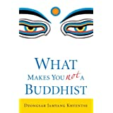 What Makes You Not a Buddhist ~ Jamyang Khyentse
