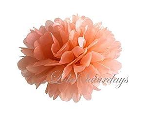 LolaSaturdays Paper Pom Poms 3 Sizes 6 Pack Peach by LolaSaturdays